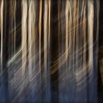 abstrakcje_16