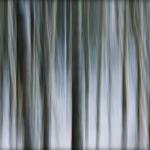 abstrakcje_39
