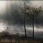 fotografia_przyrodnicza_5