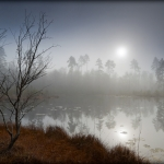 Mgły_1