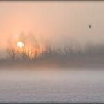 Mgły_2