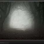 paradowski_nagrodzone_44