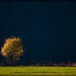 fotografia krajobrazu_2