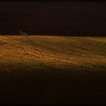 fotografia krajobrazu_3
