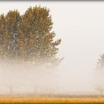 fotografia krajobrazu_5
